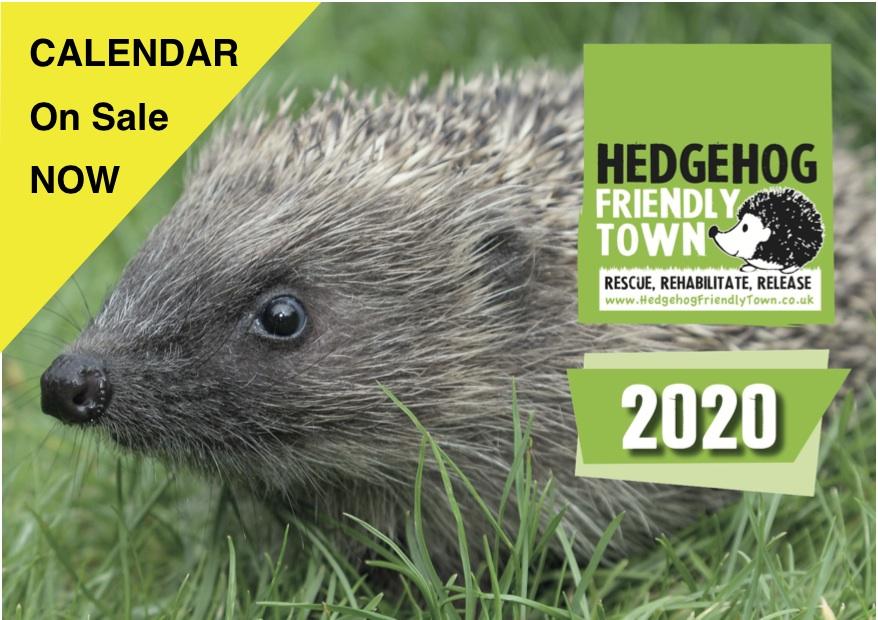 Hedgehog Friendly Town Calendar